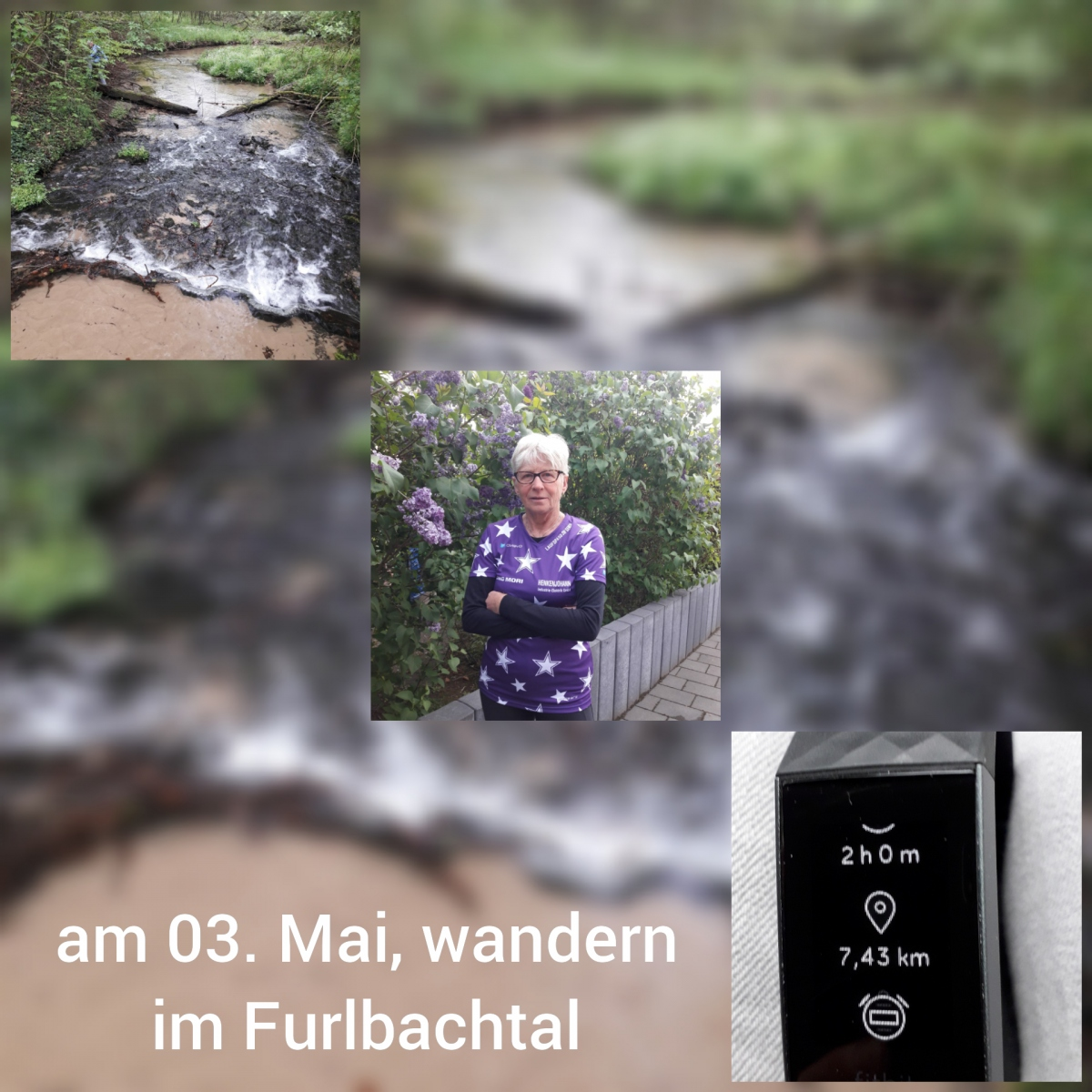 Wischott-Gisela