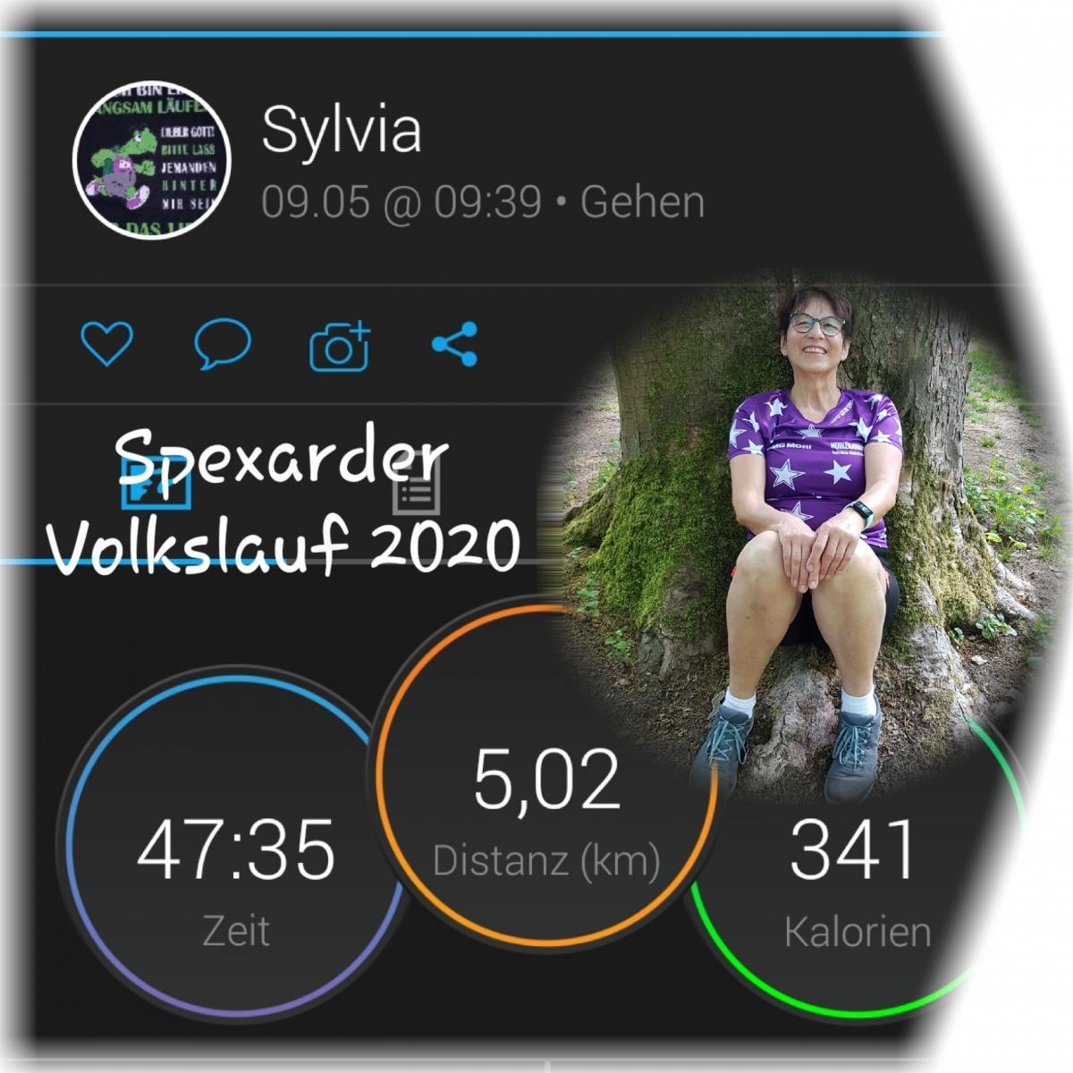 Sylvia Kümmel_Sepxard