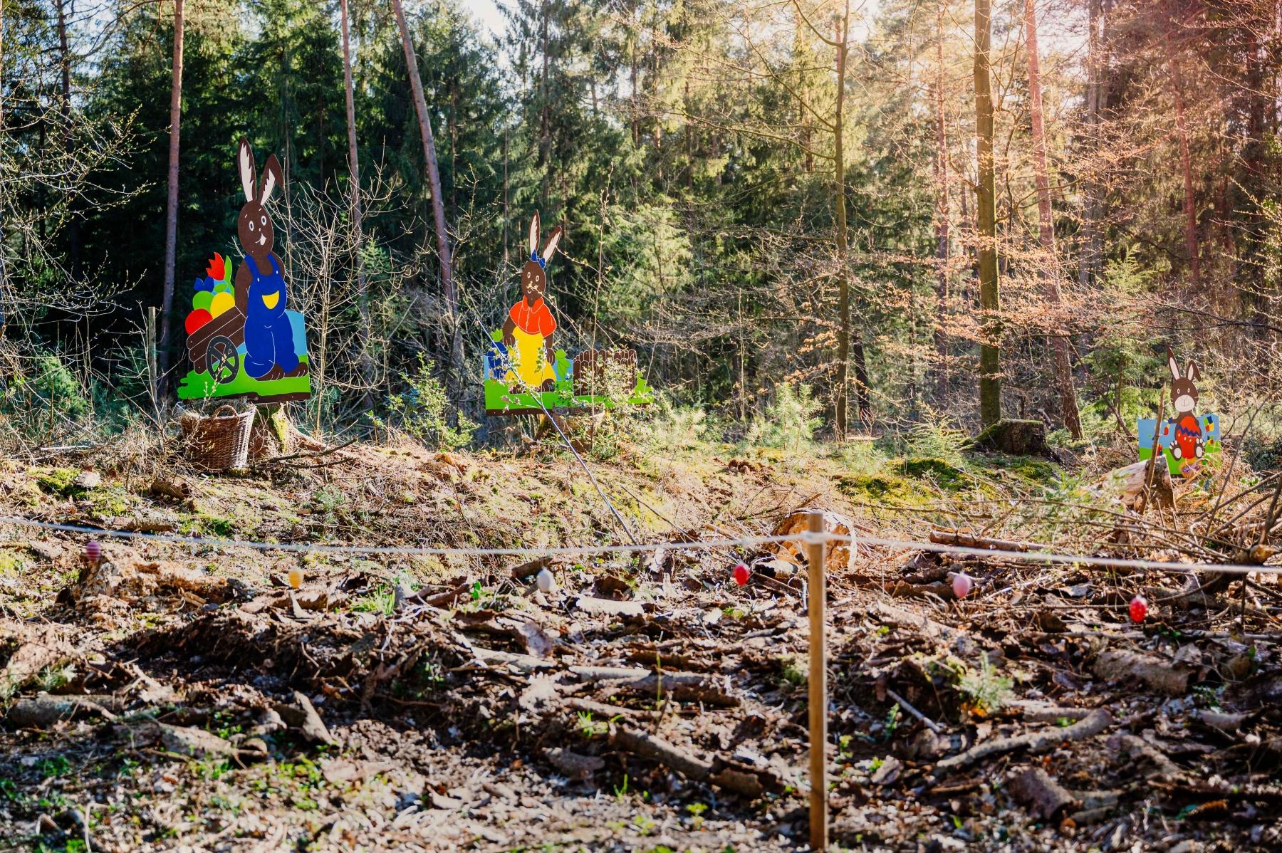 Bei der Oster-Challenge des Laufspass SW Sende besteht die Aufgabe darin, die im Holter Wald versteckte Osterhasen-Familie zu finden und ein Selfie zu machen +++ Foto: Besim Mazhiqi