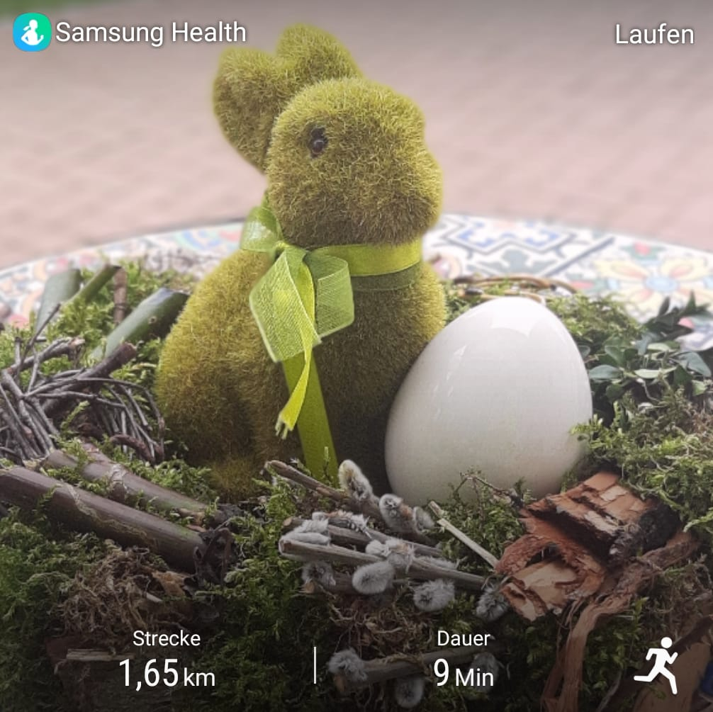 Luening-Marion-11-Challenge-Holter-Meile-pLVWp