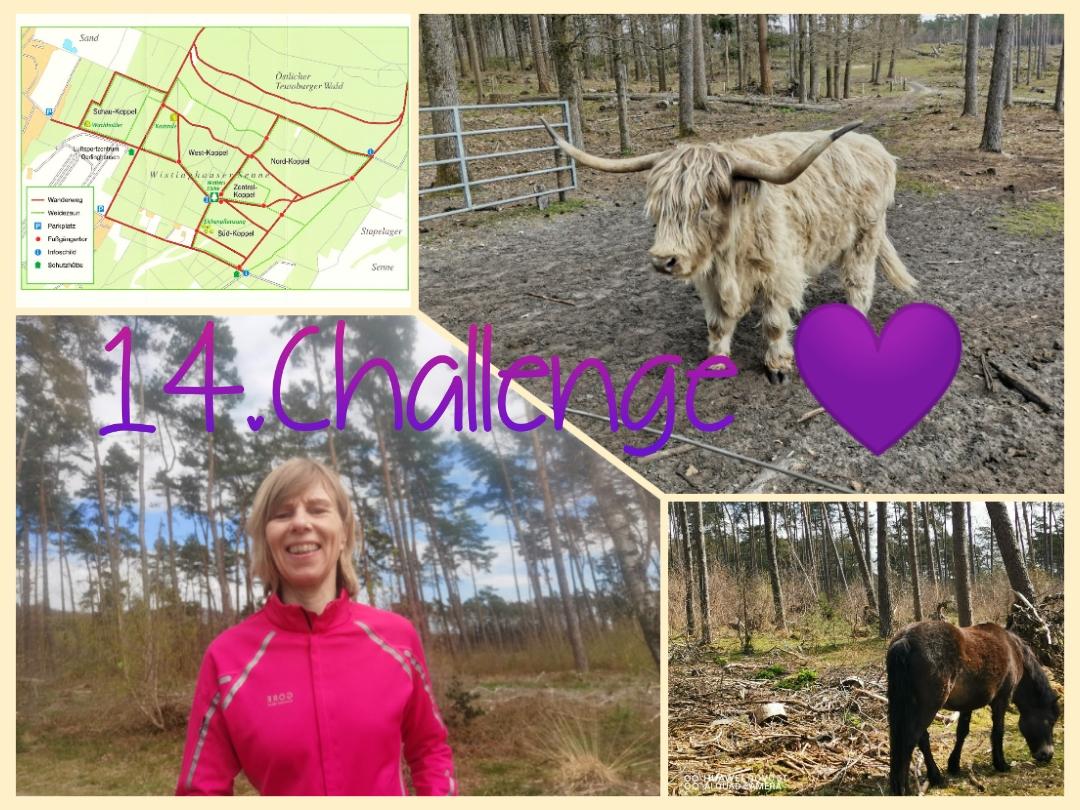Baerwald-Brigitte-14-Challenge-Wistinghauser-Senne-djTTK