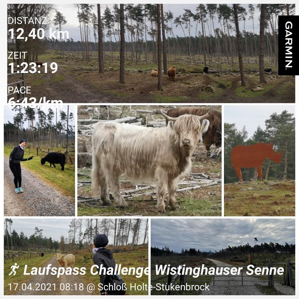 Kissner-Tina-14-Challenge-Wistinghauser-Senne-0lUvD