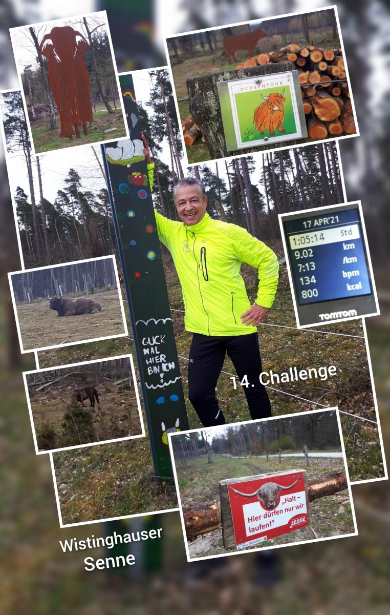 Roebling-Christian-14-Challenge-Wistinghauser-Senne-Hmqg7