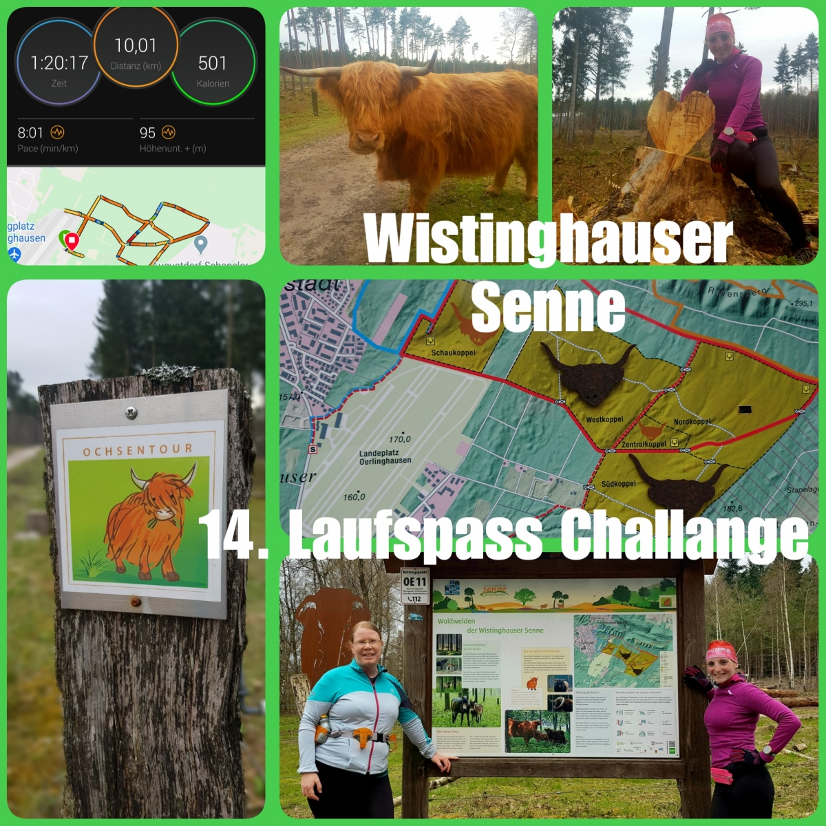 Zipter-Kristina-14-Challenge-Wistinghauser-Senne-Ow1Bw