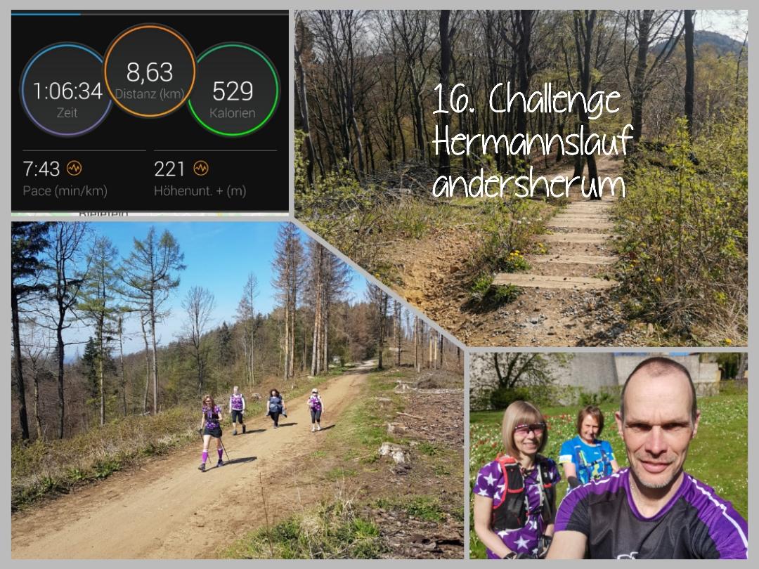 Baerwald-Brigitte-16-Challenge-Hermannslauf-Team-chI2W