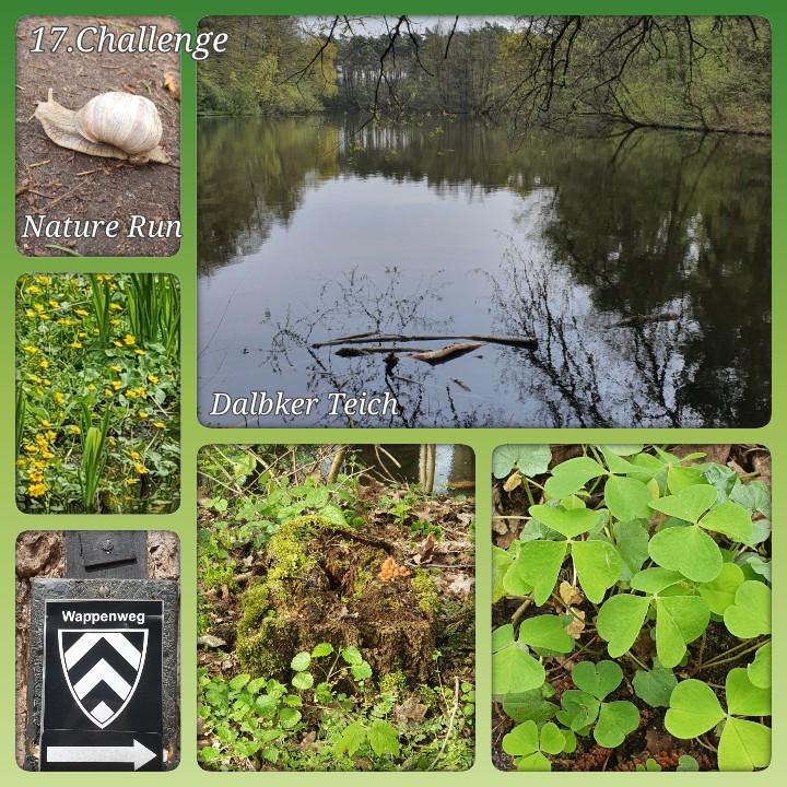 Beimdiek-Christine-17-Challenge-Nature-Run-vkPXW