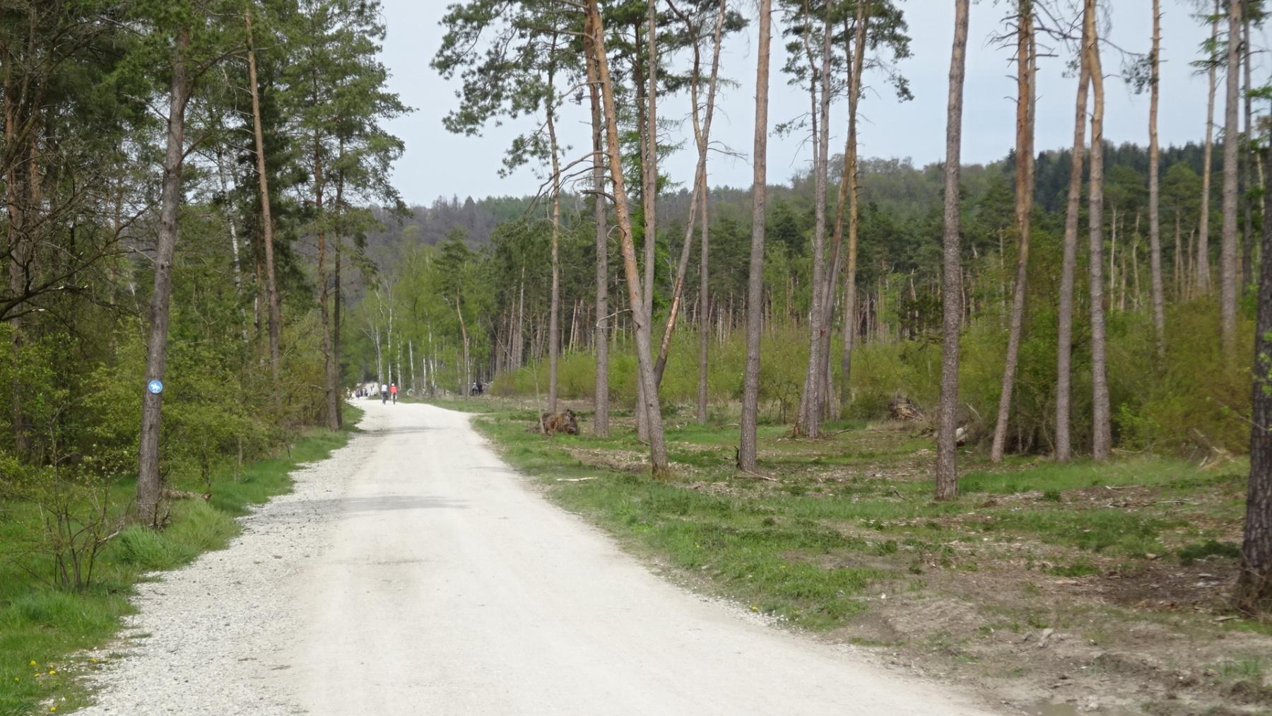 Brechmann-Frank-17-Challenge-Nature-Run-xz9ge