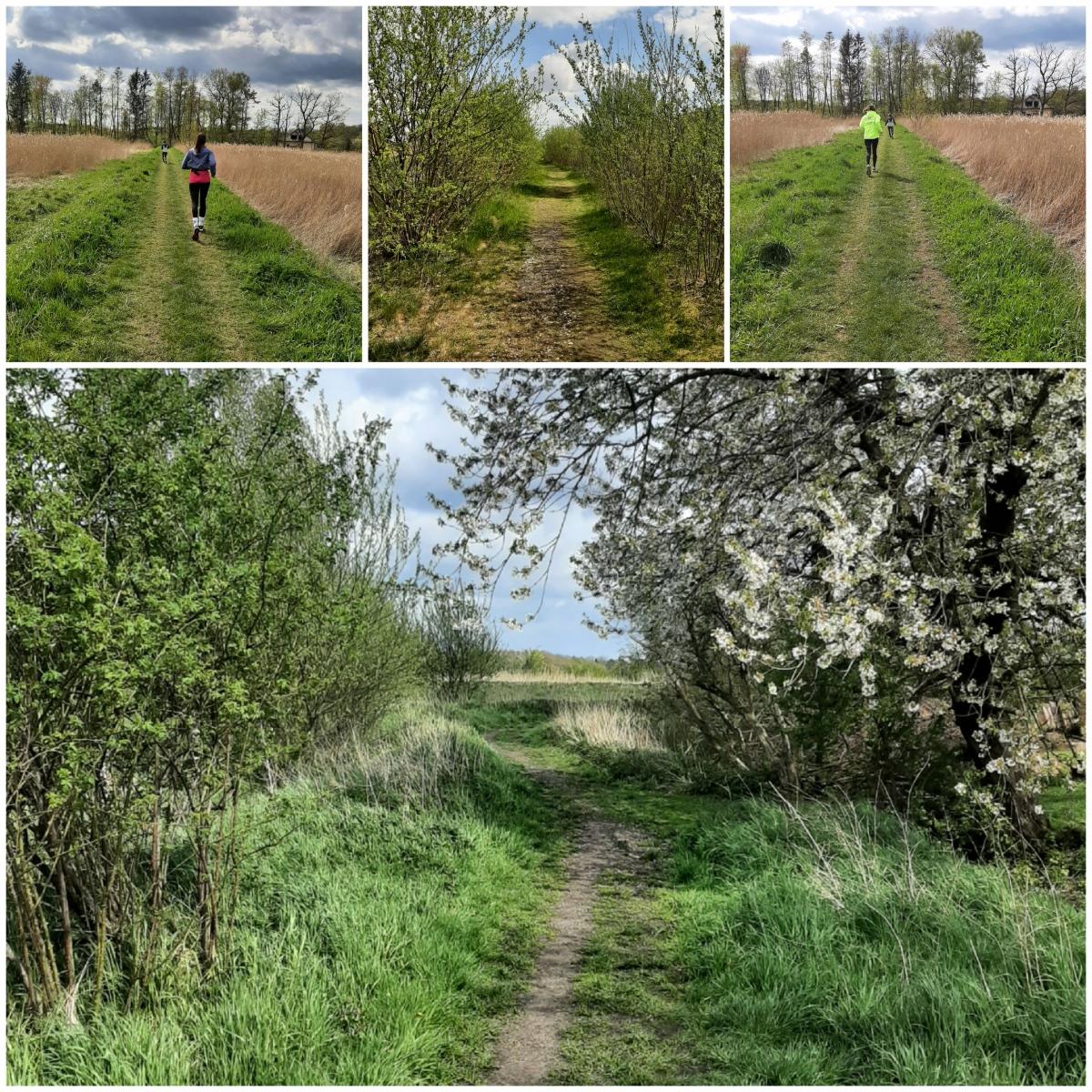 Pfizenmaier-Barbara-17-Challenge-Nature-Run-csQEn