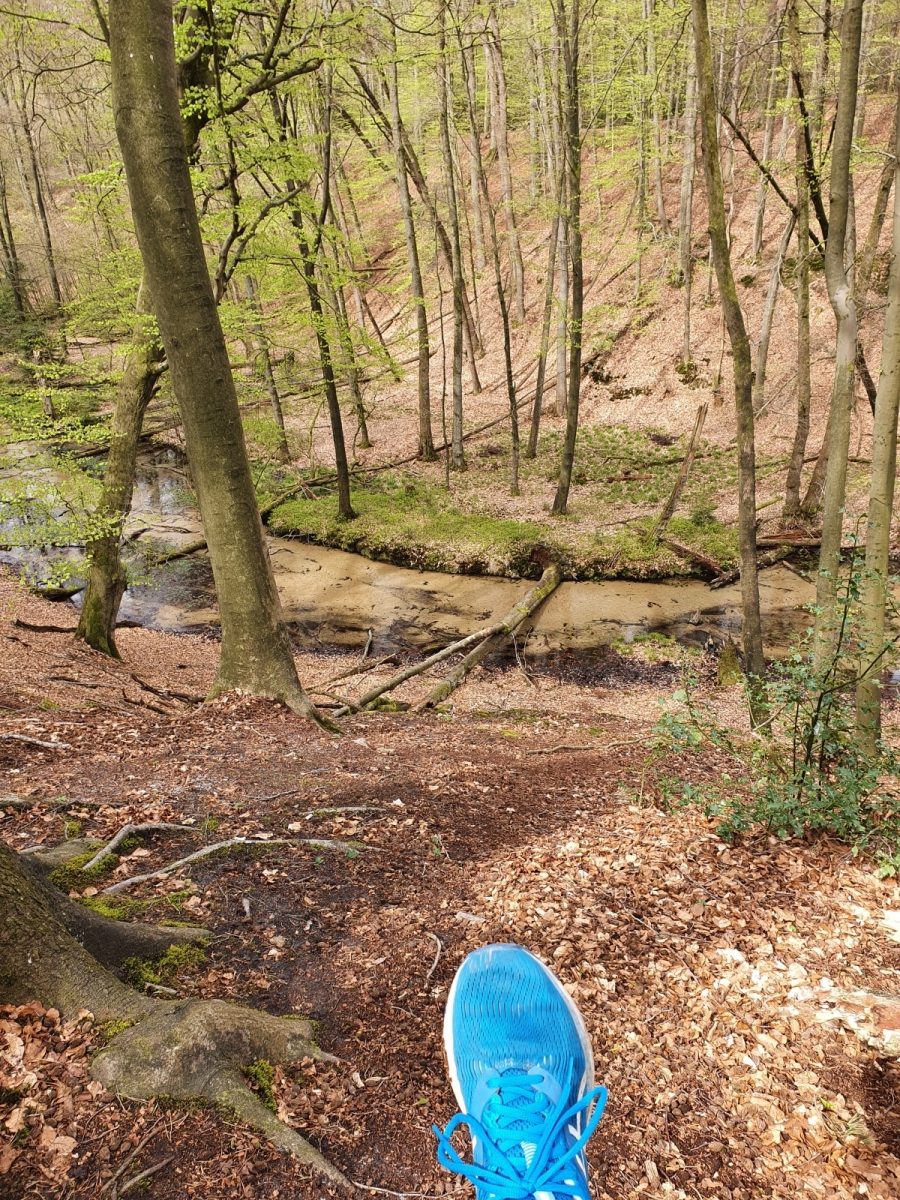 Pollmeier-Sara-17-Challenge-Nature-Run-Q12ct