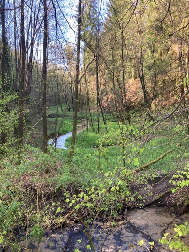 Rodenbeck-Guenter-17-Challenge-Nature-Run-S4Suy