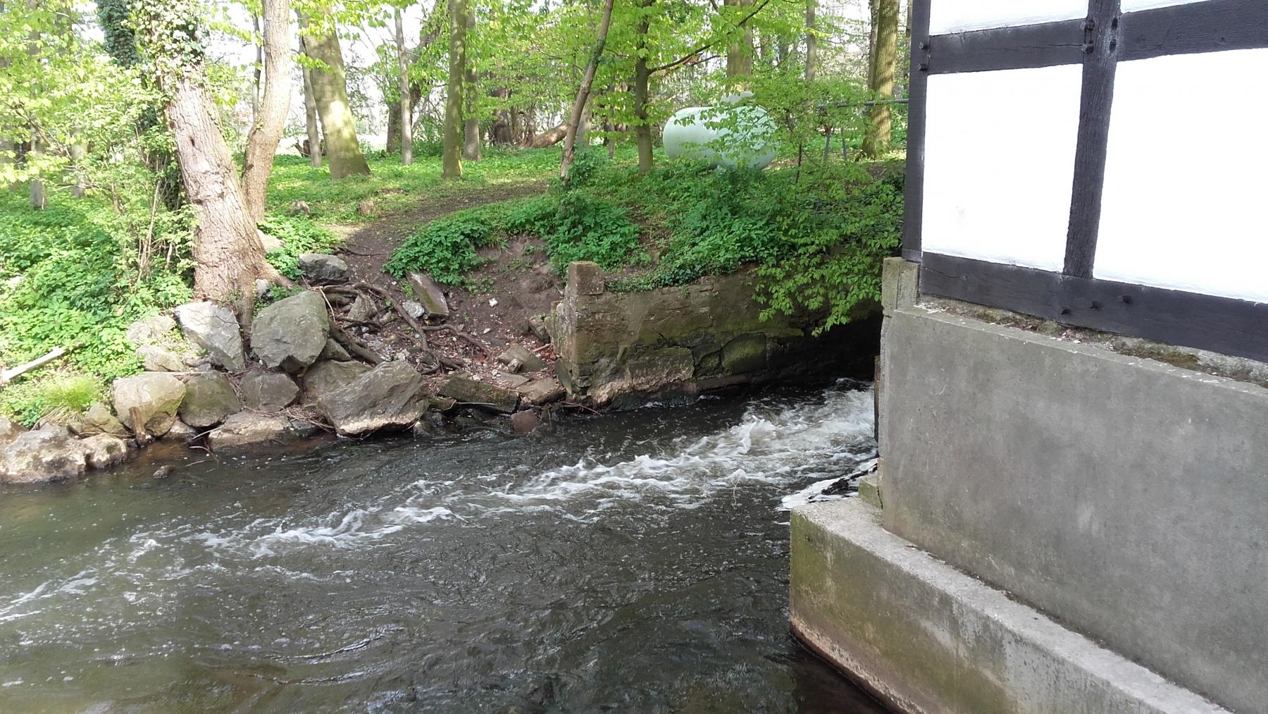 Wishart-John-17-Challenge-Nature-Run-qCLwk