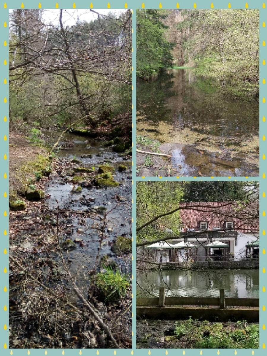 Zappini-Gisela-17-Challenge-Nature-Run-cnOjF