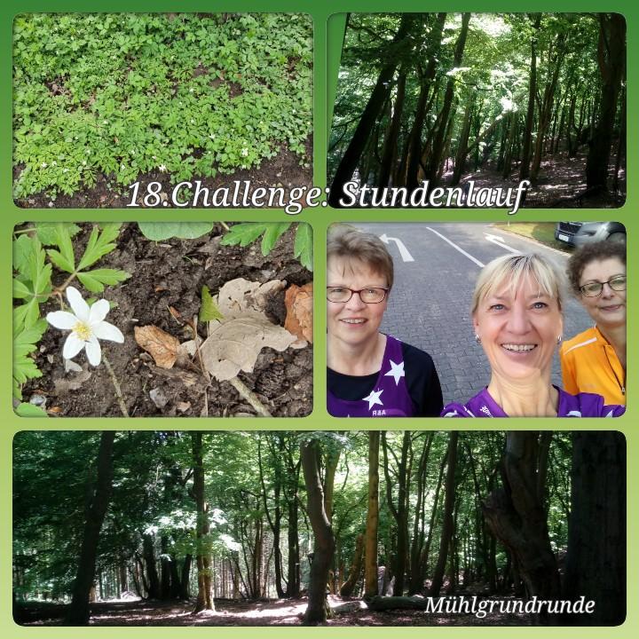 Beimdiek-Christine-18-Challenge-Stundenlauf-V5xsA