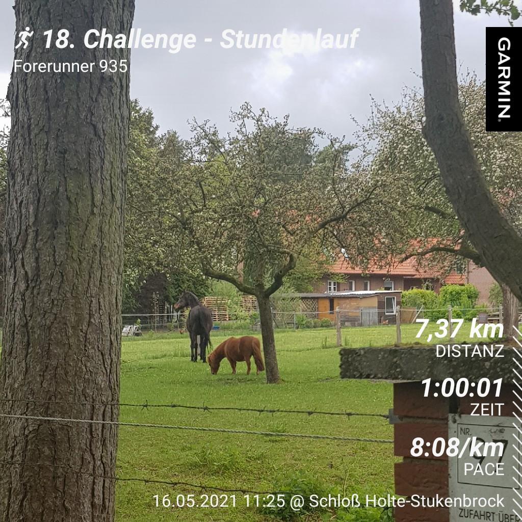 Frenzel-Stefanie-18-Challenge-Stundenlauf-yskGp