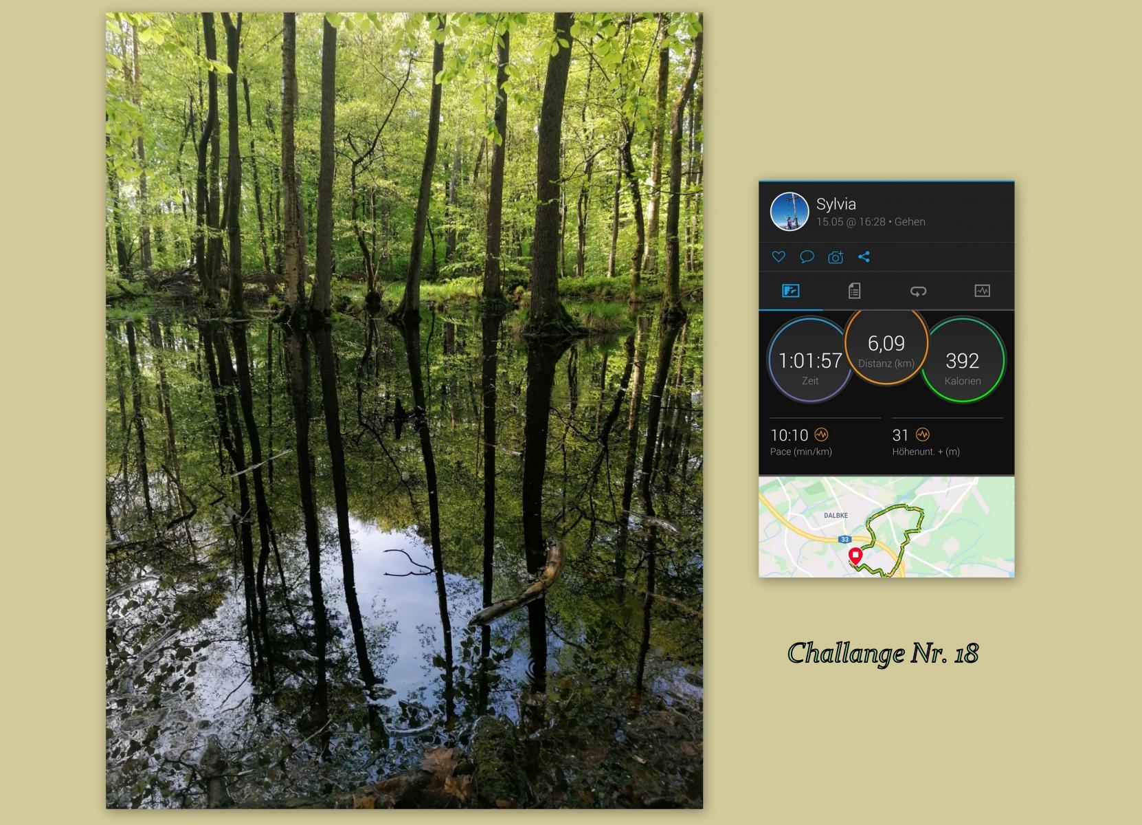 Kuemmel-Sylvia-18-Challenge-Stundenlauf-MniH6