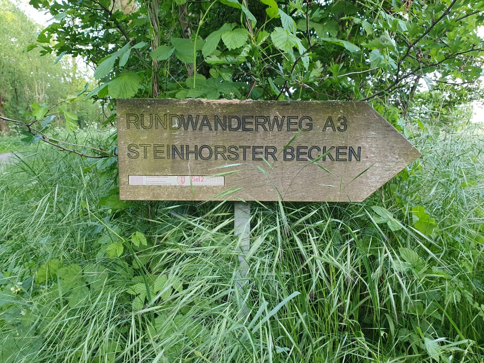 Beimdiek-Klaus-Peter-19-Challenge-Steinhorster-Becken-F4W8B