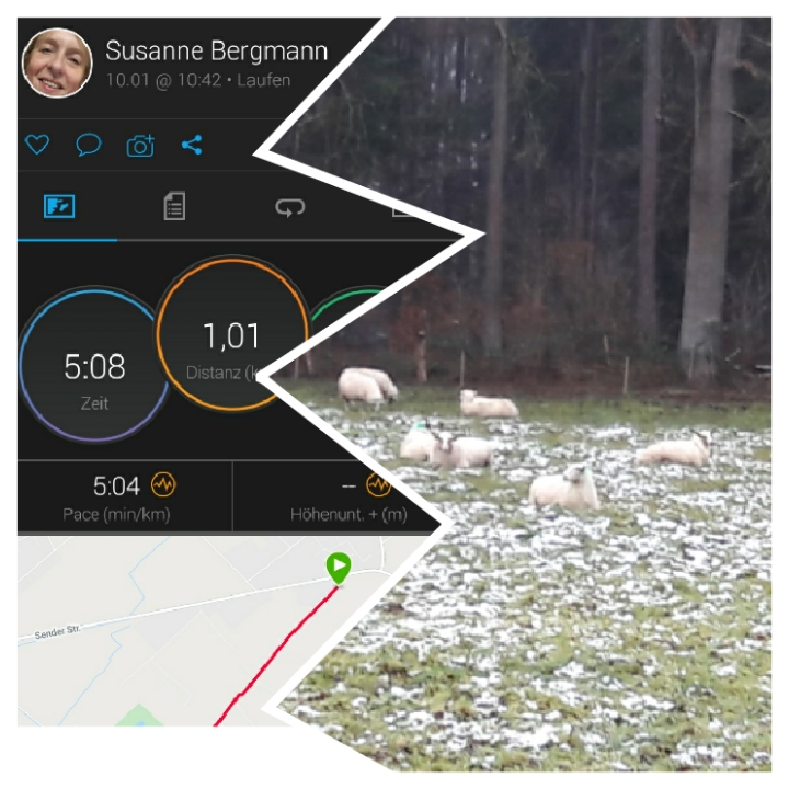 Bergmann-Susanne-2-Challenge-Mittelstreckenlauf-IUJDE