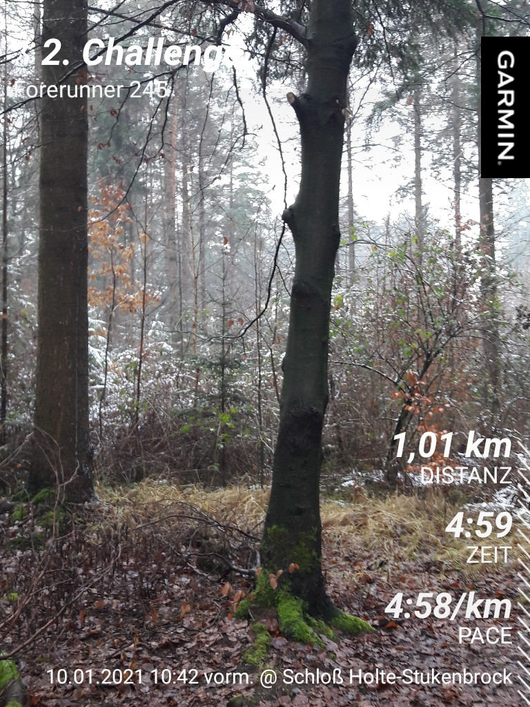 Sielemann-Ulrike-2-Challenge-Mittelstreckenlauf-7L1Om