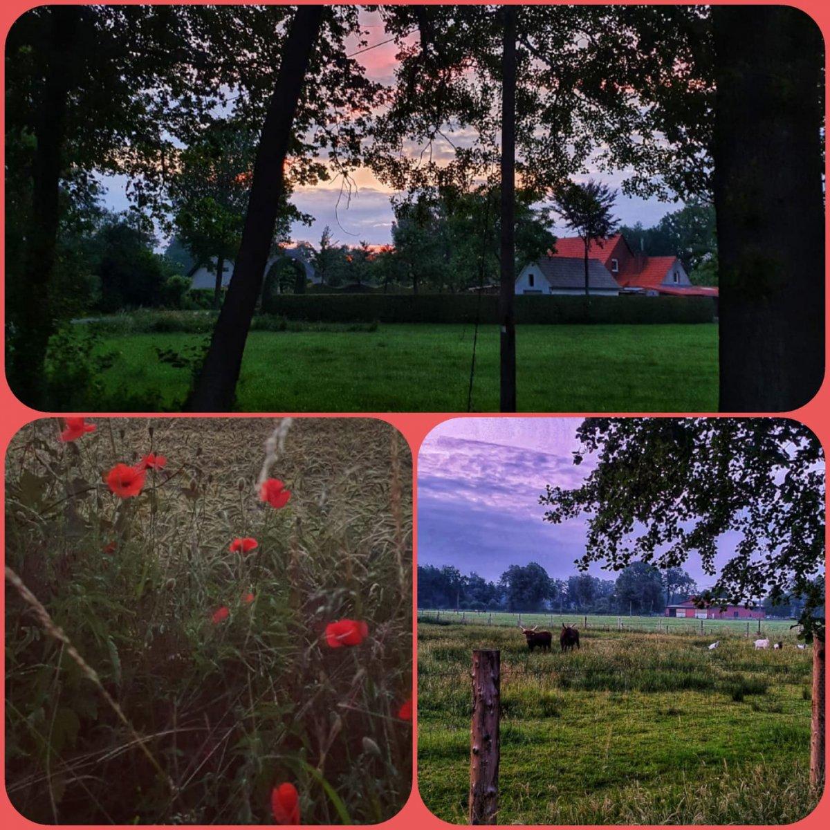 Kruse-Manuela-23-Challenge-Sonnenaufgang-i6lUQ