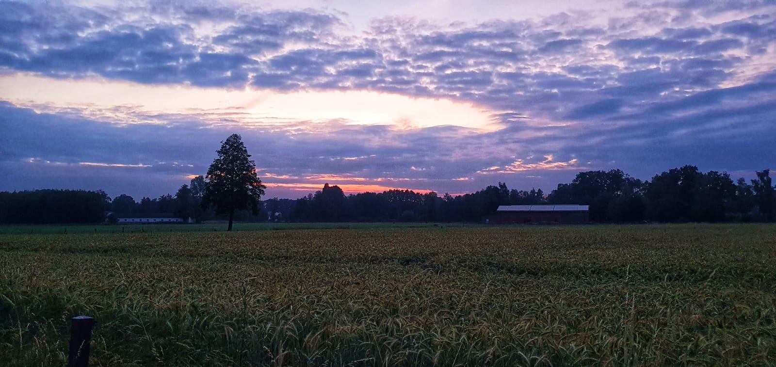 Schirbel-Sigrid-23-Challenge-Sonnenaufgang-8z0CF