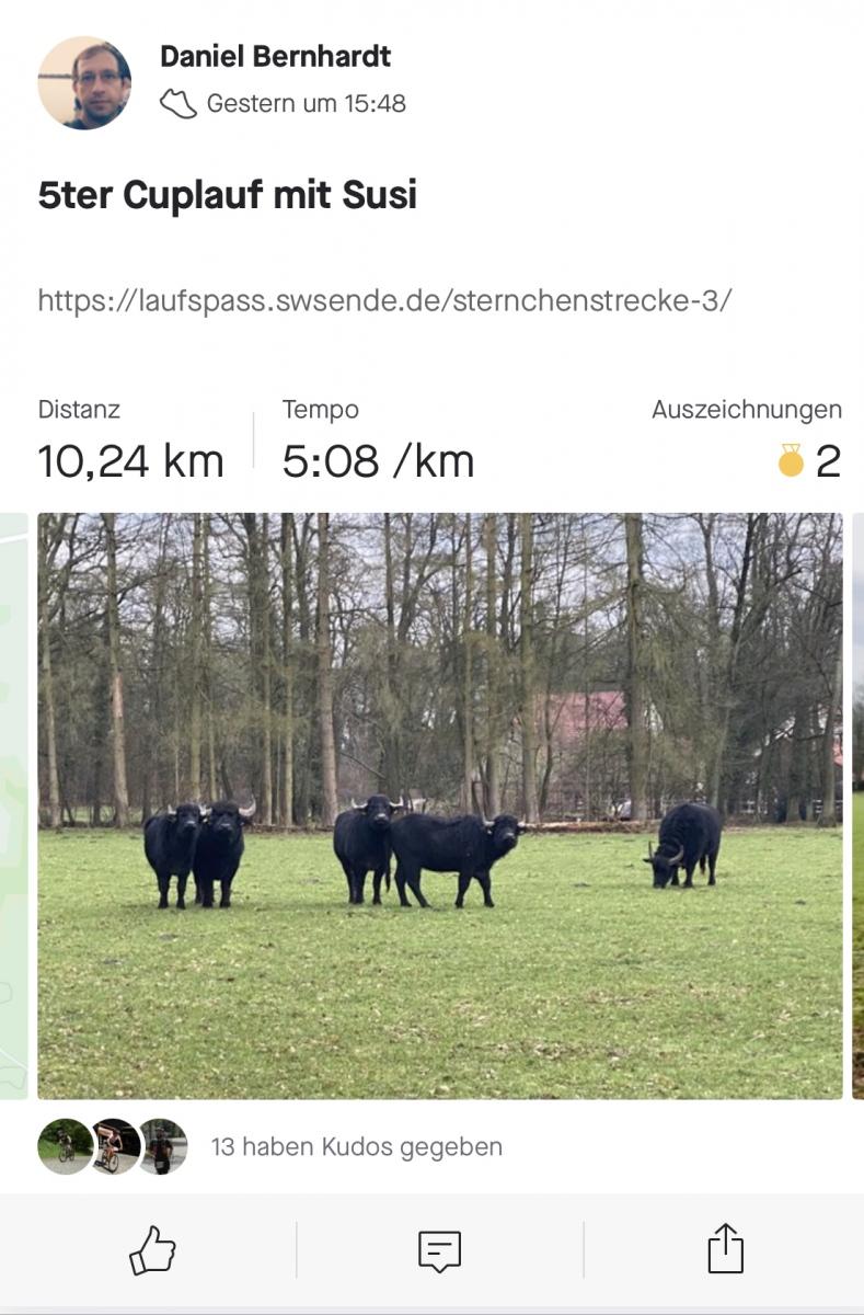 Bernhardt-Daniel-5-Challenge-Sternchenstrecken-j5adg